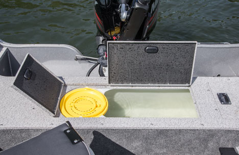 Aerated Stern Livewell and Baitwell