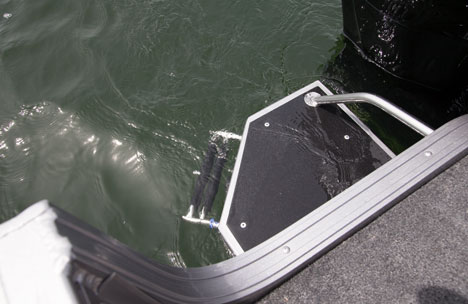 Swim Platform with Ladder